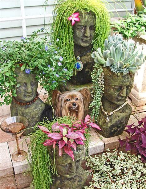 gardening humor  funny images  pinterest
