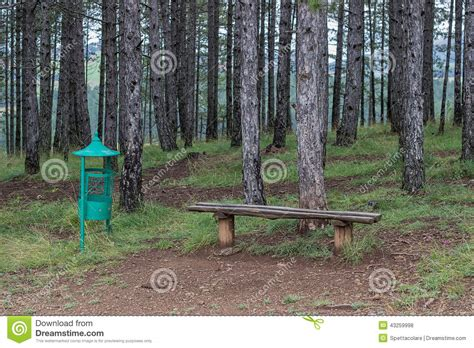 bench in nature seating bench in nature and a trash can stock photo