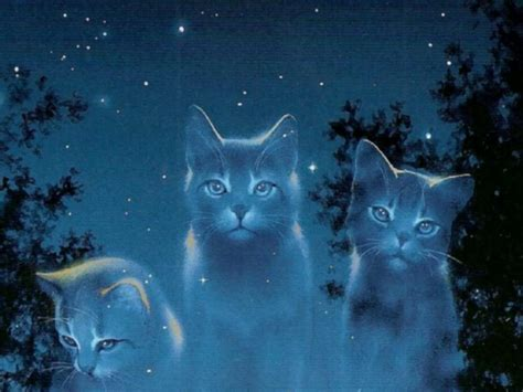 wallpaper cat night warriors cats backgrounds wallpaper cave