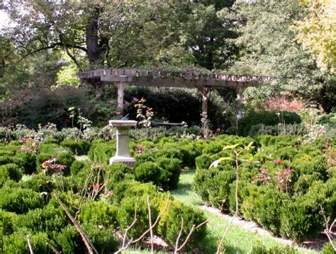 tudor place dc gardens tudor place in october dc gardens