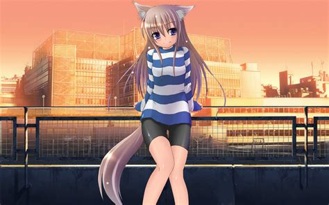 anime cat girl hd wallpapers full hd pictures anime cat girl wallpapers full hd pictures