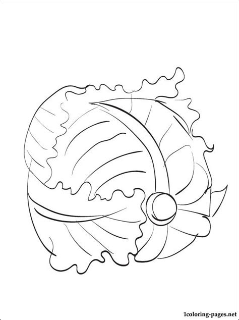 Lettuce Printable And Coloring Page Coloring Pages Lettuce Coloring Page