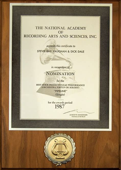 lot detail stevie ray vaughan grammy nomination plaque