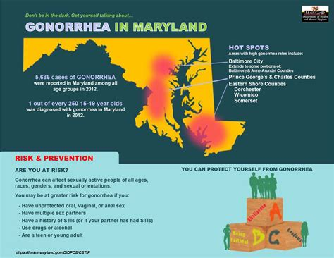 Md Gov Search Gonorrhea Diagram Images