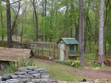 backyard bayou chicken house on the bayou backyard chickens community