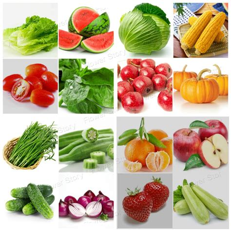 Aliexpress Com Buy 2300 Survival Heirloom Varieties Where To Buy Seeds For Vegetable Garden