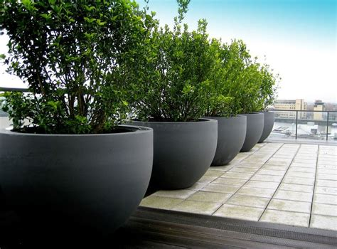 Large Concrete Planter by 25 Best Ideas About Large Concrete Planters On Pinterest