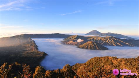 Open Trip Explore Karimunjawa Start Jakarta surabaya city tour explore mount bromo and madakaripura