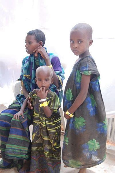 voice of america somali section 162 best images on pinterest food safety food security