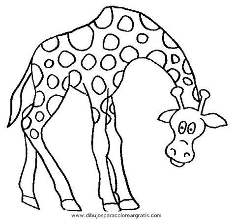 imagenes de jirafas para colorear jirafas animadas related keywords suggestions jirafas