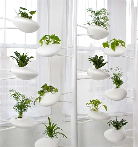 interior garden plants modern hydroponic systems for the home and garden