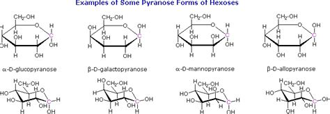 d conformation carbohydrates cyclic forms of monosaccharides chemistry libretexts