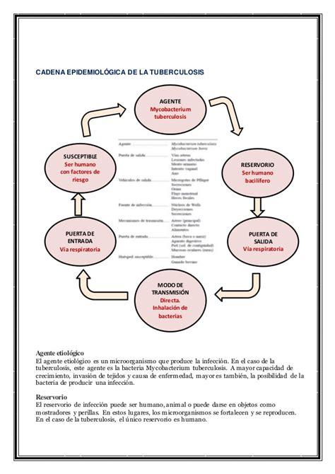 cadena epidemiologica treponema pallidum epidemiolog 205 a de las enfermedades transmisibles