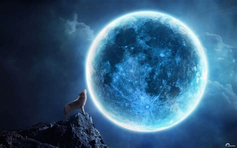 howling cg digtal art fantasy animals dogs wolves wolf landscapes night moonlight moon sky