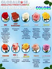 flower color meanings the meaning of colors global flower