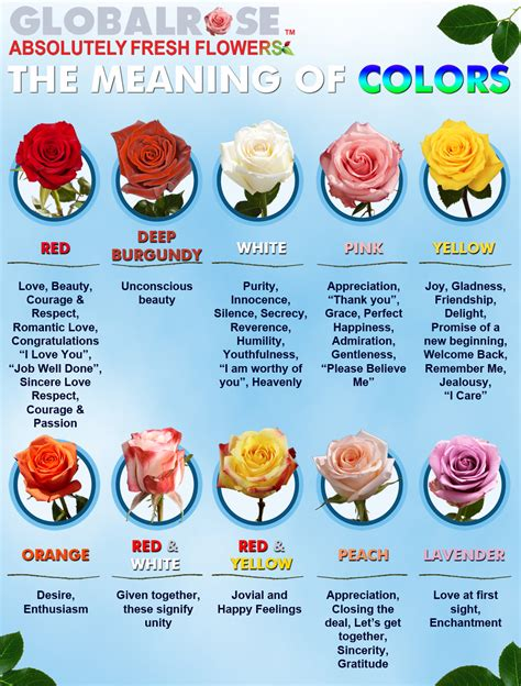 what do the colors of roses the meaning of colors global flower