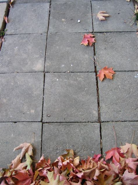 concrete stain removal   remove common stains