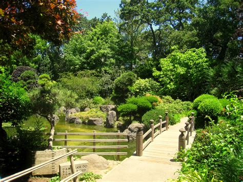 file japanese tea garden san mateo ca img 9119 jpg