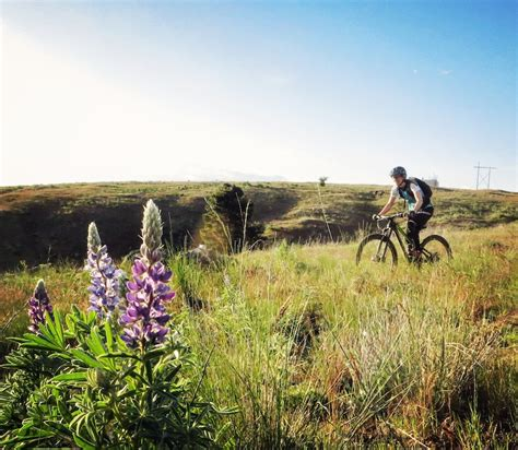 green light spokane valley spokane valley washington mountain bike trails trailforks