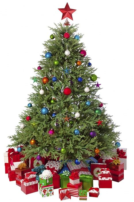does goodwill take christmas trees choosing an artificial tree gardensite co uk