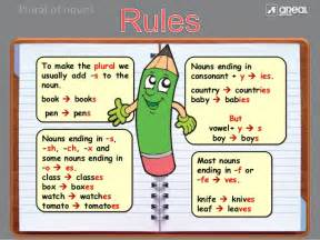 Ms To Hour Unit 2 Lesson 4 Singular And Plural Nouns Ms Grimes