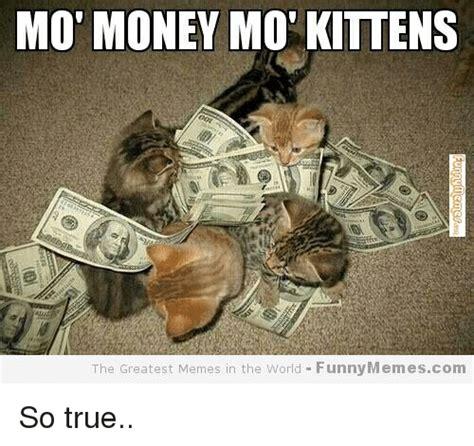 Mo Money Meme - mo money mot kittens the greatest memes in the world funny memescom so true funny meme on sizzle