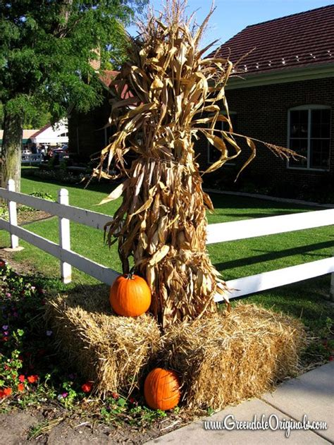 Fall Decorations With Corn Stalks by Best 20 Corn Stalk Decor Ideas On