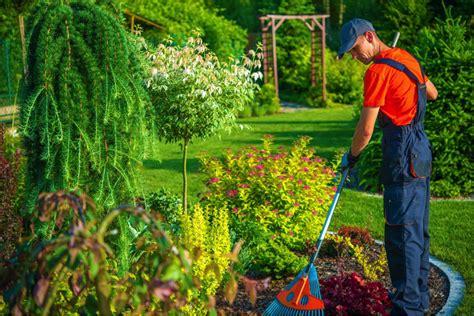 Backyard Grass Ideas Spring Clean Your Home The Cheap Way Better Housekeeper