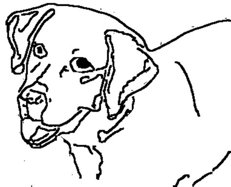 coloring pages of police dogs police dog coloring pages color bros