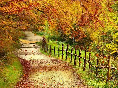 Landscape Park Definition Fall Scenery Tag Beautiful Autumn Scenery Wallpapers