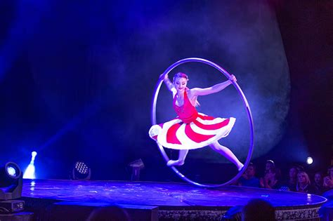 magical cirque christmas home
