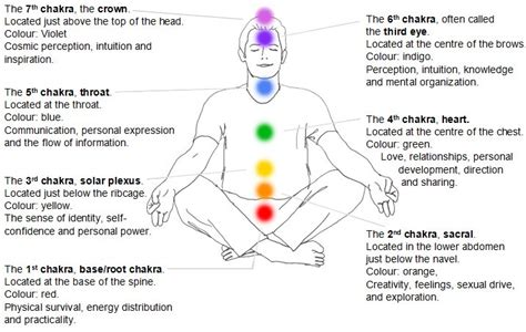 sacral chakra location the hips don t lie how to release stress through movement
