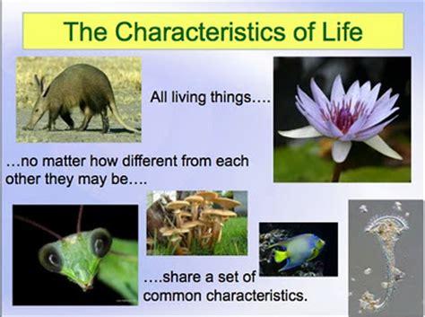 define biography characteristics characteristics of life mrs barrett s biology site