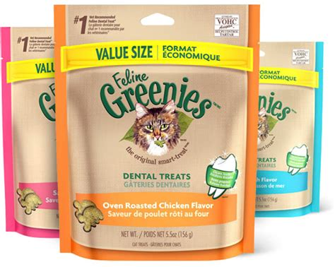 vet recommended dental chews greenies feline succulent beef flavor dental cat treats 2 5 oz bag chewy