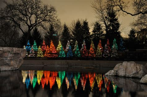 Marco Fisichella Photography Chicago Places And People Zoo Lights Lincoln Park