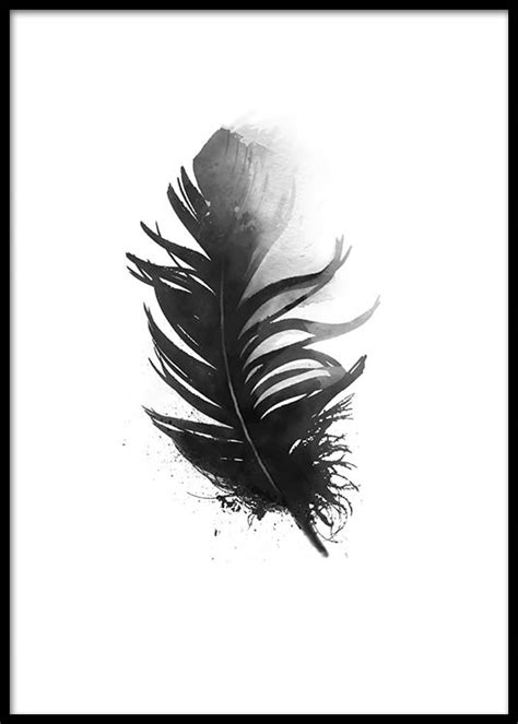 printable posters black and white black and white poster with pretty aquarelle feather print
