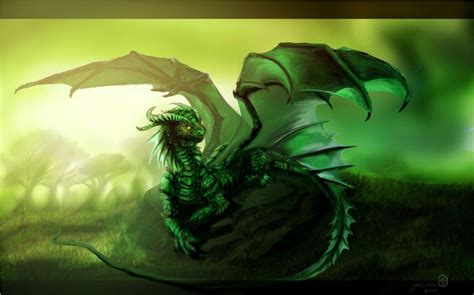 wallpaper cute dragon green dragon wallpapers wallpaper cave