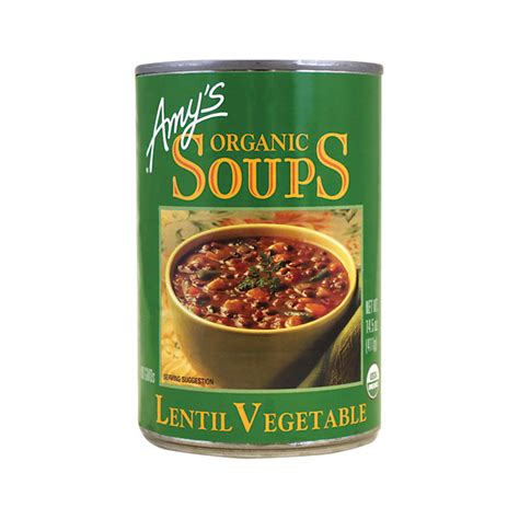 S Kitchen Organic Soup S Kitchen Organic Lentil Vegetable Soup 14 5 Oz Can Swanson Health Products
