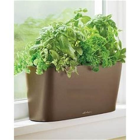 Window Sill Garden Planters Windowsill Self Watering Planter Espresso
