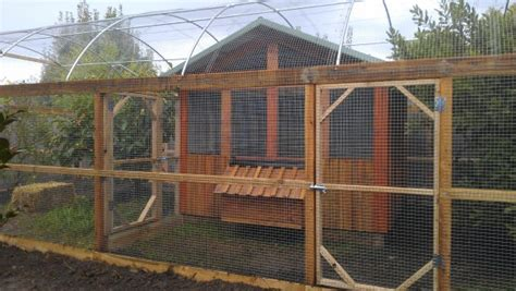 backyard chickens melbourne chicken coops edible gardens chook houses backyard