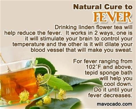 fever remedy remedies