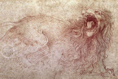 Sketches By Leonardo Da Vinci by Drawings Of Leonardo Da Vinci And His Circle