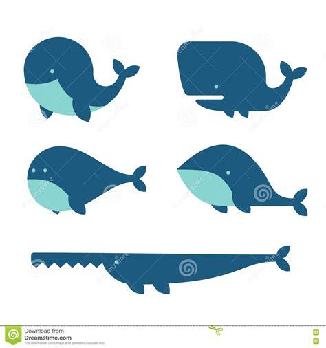 ballenas animadas whale icon set cartoon style on white background vector