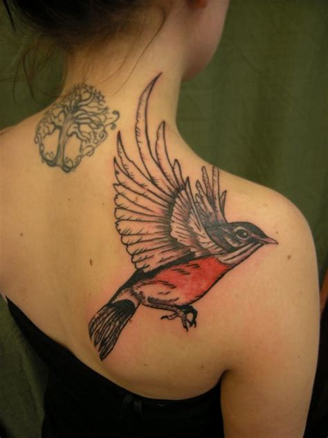 robin tattoos robin bird flying www pixshark images