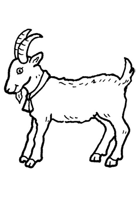 cartoon goat coloring page free printable goat coloring pages for kids