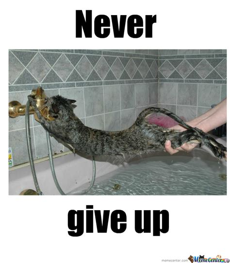 I Give Up Meme - never give up by lillyray meme center