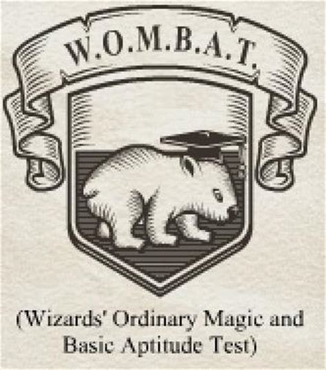 ordinary magic vignettes from the big apple books wizards ordinary magic and basic aptitude test harry