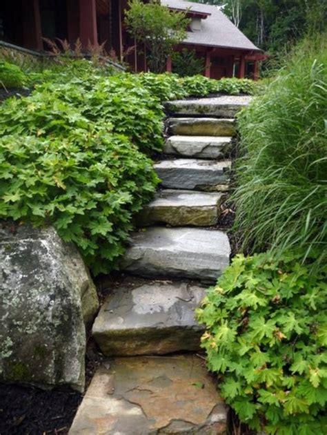 american garden tips for the care interior design