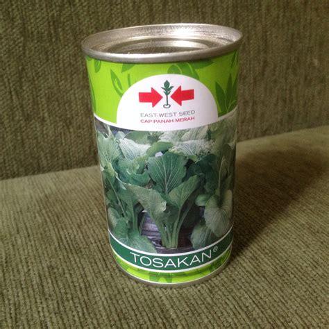 Benih Sawi Cap Panah Merah jual 100 gram benih sawi caisim tosakan cap panah merah