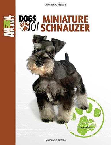 dogs 101 schnauzer miniature schnauzer animal planet dogs 101 health personal care